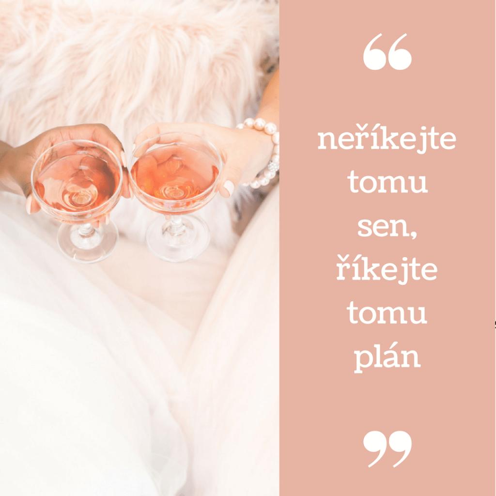 Neříkejte tomu sen, říkejte tomu plán!